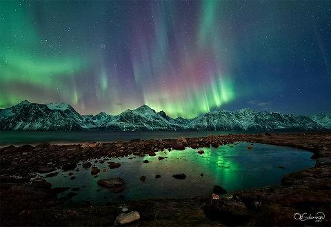 18_auroras1-blog480